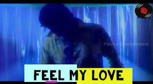 Feel My Love Sambalpuri Song Lyrics | Umakanta Barik